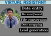 be your virtual assistant for data entry and web research