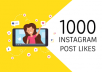 give you add 1000+ Instagram likes 100% Non Drop Guaranteed ( super fast deliver)
