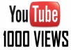 provide 1000 youtube views