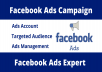 setup and optimize facebook ads campaign professionally