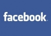 Get 2000 facebook page likes Instant Refill - No Refill/ No Refund Instant to 1 Hour finish