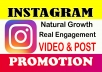 Do Instagram Promotion, Post and video promote