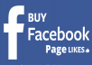 Give you 800 Facebook page like the