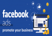 If you want to increase your sales and grow your business then there is no alternative of digital marketing. Facebook marketing is one of the vita parts of digital marketing. It has become a very important factor in today's business world. So, if you want to boost your business then there's no alternative to Facebook marketing for your products. Here I am to support you to set up Facebook ad campaign to boost your product to its targeted audience.    My Services  - Determine Marketing Objectives (Brand Awareness,  Leads, Sales, etc);  - Demographic Research and Analysis;  - Use Existing Site Visitor Information to Build Lookalike Audiences for Other Marketing Campaigns;