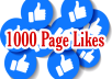 Give you 1000 Facebook Page Likes the