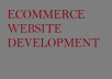 I am a Website Developer, i have a team of ICT Experts who can design an ecommerce website.