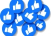 give you 100 Facebook page likes
