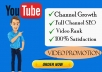 do youtube channel SEO and video promotion