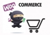 build wordpress ecommerce website online store