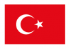 I am a native Turkish speaker with a professional level of English and I can translate any text or doc you need. I can also translate conversations if needed.