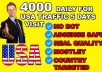 Drive organic usa real target website traffic visitors
