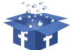 provide Facebook Likes (100 Facebook Page Likes) ★