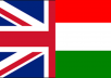translate up to 200 Hungarian words to English and vice versa