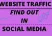 do marketing for find out website traffic