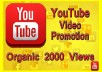 Provide 2,500 Organic Watchtime Views on your YouTube Video