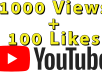 Give you 1000 YouTube views and 100 YouTube likes in 5 days