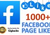 provide 1000 FACEBOOK Page Likes for your Page