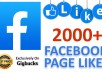 provide 2000 FACEBOOK Page Likes for your Page