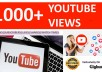 provide you 1000 High Quality YOUTUBE Views for your Channel
