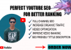 be your YouTube SEO strategist to grow faster