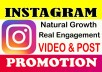 Do Permanent Instagram promotion, video and post like