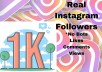Drive 1000 Instagram Real Followers