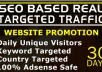 drive USA targeted traffic, real seo organic web visitors for 30 days