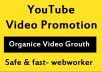 do Organic YouTube video Promotion and Marketing in 24 Hours