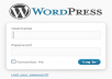 install wordpress in your website