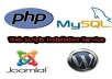 install your Php/MySQL/CGI/Perl or any Scripts on your host