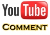 give you 25 customized comment and likes, favs and subs on your youtube video