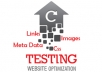 Test and Review your site for Optimization