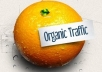 improve Your Google Organic Traffic By Sending Real Traffic To Your Website