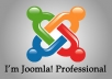install, configure, fix and solve any problem on your joomla! website