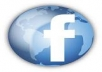 send 400 US facebook fans, real people, no admin access needed, completed in  2 days
