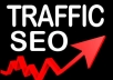 provide website traffic service and send 5,000 visitors to your site