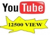 help increase for 12500 view videos on youtube