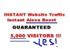 Give You 3000 To 8000 Visitors Every Day Forever Get Unique Traffic To Your Site