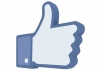 give you 300 Facebook likes to your Page/Status/Photo/Comment