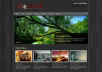 give you a Premium WordPress Theme for Online and Offline Flexible Design