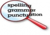 proofread any document, article or essay of up to 2,000 words