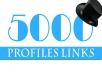 build 5000 profiles links with 90 percent dofollow backlink