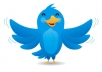 add 15,000 REAL twitter followers to your account