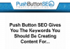 install pushbutton seo plugin in one of your wordpress
