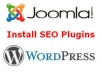 install SEO plugins into your Joomla or WordPress blog/website