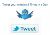 tweet your website URL to 2500 + followers