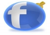 provide 350 USA facebook likes in 3 business days, no admin, 350 facebook fans