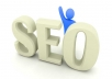 review your site and give you my expert opinion on how to improve SEO to dominate google