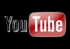 deliver 1,000 QUALITY YouTube VIEWS
