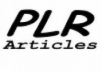 give you 140K Ultimate PLR Articles